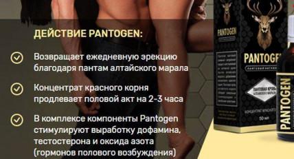 Pantogen (пантогам) - засіб для потенції